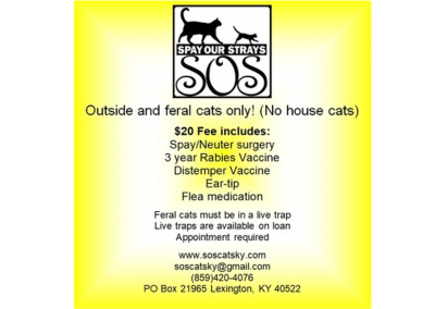 SOS Spay Our Strays